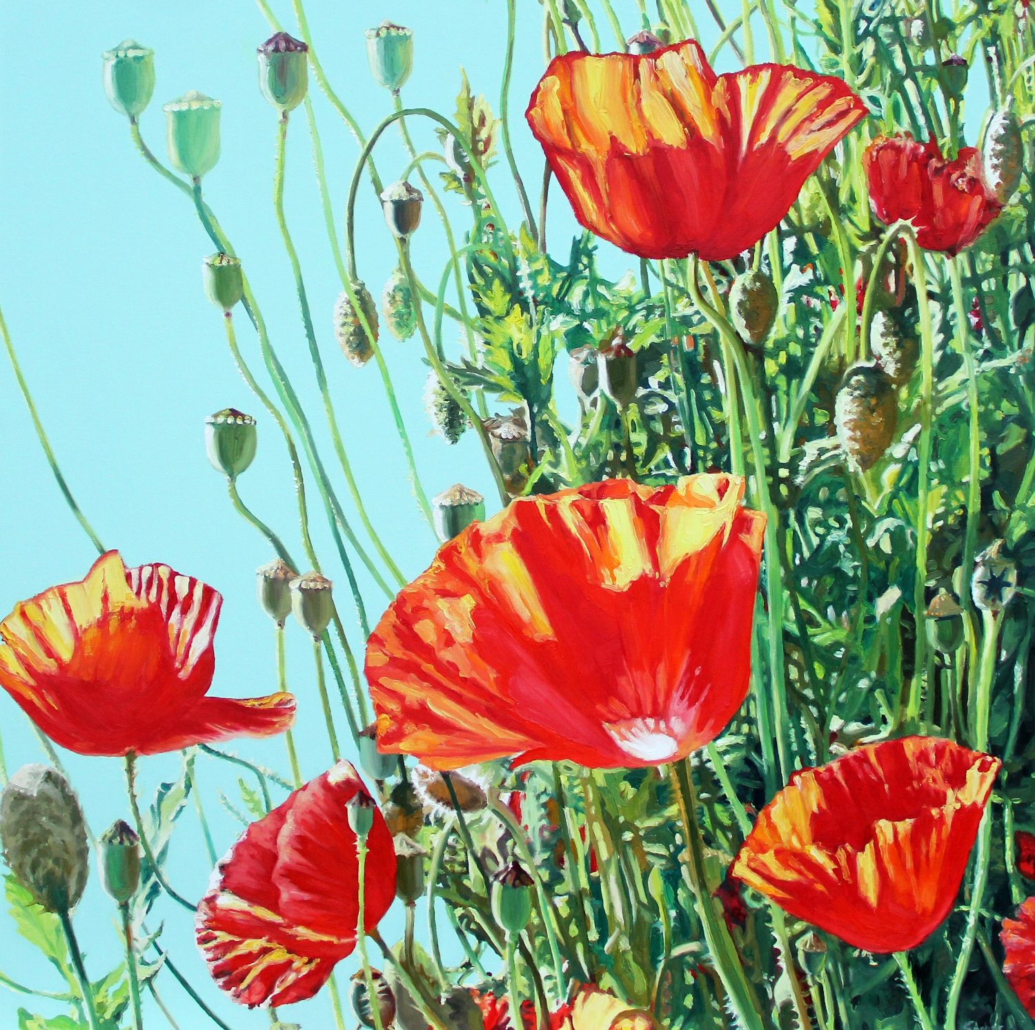 2. A Tangle of Poppies